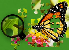 A Jigsaw Puzzle Sample